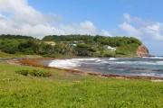 Saint-Vincent-et-les-Grenadines doit composer avec des algues qui viennent... (Photo Stéphanie Morin, La Presse) - image 3.0