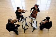 Le Quatuor Bozzini... (Photo MichaelSlobodian, fournie par le Quatuor Bozzini) - image 3.0