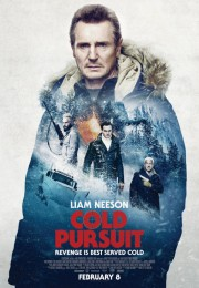 Cold Pursuit... (Affiche fournie par Entract Films) - image 2.0