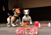 Le chien robotiséAibo créé par Sony... (Photo Kazuhiro Nogi, archives Agence France-Presse) - image 3.0