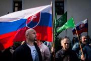 Des partisans du parti d'extrême droite de Marian... ((PHOTO BY VLADIMIR SIMICEK / AFP) - image 2.0