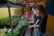 Annabelle Audet, Gabrielle Dulac et Morena Vasseur, étudiantes en 5e année ... (ANDRÉ PICHETTE, PHOTO, PRESSE) - 7,0