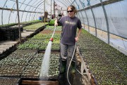 Rachel Trépanier de la ferme La Chouette Lapone ... (ANDRÉ PICHETTE, PHOTO, PRESSE) - 13.0
