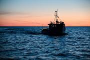 Pêches et Océans Canada interdit la levée des... (PHOTO ÉDOUARD PLANTE-FRÉCHETTE) - image 6.0