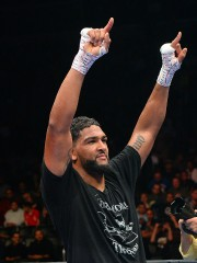 Dominic Breazeale... (PHOTO JAYNE KAMIN-ONCEA, ARCHIVES USA TODAY SPORTS) - image 2.0