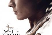 The White Crow... (IMAGE FOURNIE PAR MÉTROPOLE FILMS) - image 2.0