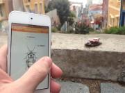 RoboRoach vous permet de vous déplacer ... (PHOTOGRAPHIE DU SITE BACKYARDBRAINS.COM) - 7.0 Images