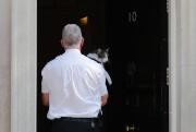 Lorsqu'un policier s'est emparé de Larry, le chat... (PHOTO TOLGA AKMEN, AGENCE FRANCE-PRESSE) - image 2.0