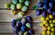 Les pommes, les poires, les cerises ou encore... (PHOTO MARCO CAMPANOZZI, ARCHIVES LA PRESSE) - image 4.0
