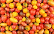 Il est préférable d'opter pour les tomates cerises... (PHOTO GETTY IMAGES) - image 6.0