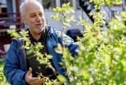 Richard Bourdeau imite la nature pour créer un... (PHOTO OLIVIER JEAN, LA PRESSE) - image 6.0