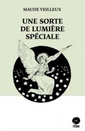 Une sorte de lumière spéciale, de Maude Veilleux... (IMAGE FOURNIE PAR ÉDITIONS DE L'ÉCROU) - image 5.0