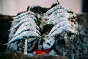 Les brochettes de sardines sont un classique de... (PHOTO GETTY IMAGES) - image 5.0
