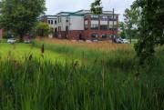 Aperçu des terrains de l'Institut Douglas à Verdun... (PHOTO OLIVIER PONTBRIAND, LA PRESSE) - image 10.0