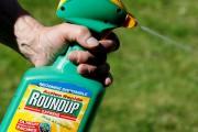 Le glyphosate est vendu sous le nom commercial... (PHOTO REGISDUVIGNAU, ARCHIVES REUTERS) - image 3.0