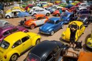 Un rassemblement de Volkswagen Beetle le 21 avril... (PHOTO ODED BALILTY, AP) - image 3.0