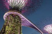 À peine plus grande que Montréal et Laval réunies, Singapour lutte depuis... - image 3.0