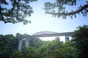 À peine plus grande que Montréal et Laval réunies, Singapour lutte depuis... - image 4.0