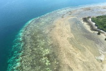 AUSTRALIA-ENVIRONMENT-CONSERVATION-REEF-BLEACHING