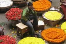 Visitez Bangalore avec le journaliste Philippe Mercure