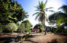 Le Costa Rica a la cote chez les Québécois. Assez pour en convaincre plusieurs  d'y refaire leur vie, d'y fonder leur famille ou d'y passer une retraite dorée.