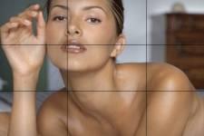 Perfect 10 a porté plainte contre le site communautaire de photos en ligne...