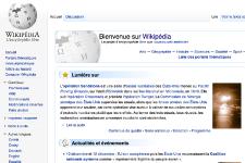 Pour ce faire, l'encyclopédie souhaite accélérer son expansion dans les pays en... (Capture d'écran)