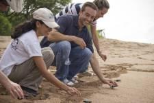 Benoît  Dagenais a littéralement adopté le Salvador où il vit depuis quelques  années. Près de l'hôtel qu'il a acheté à Los Cobanos, situé dans le  sud-ouest du pays, il organise une activité de libération de tortues. L'objectif: aider ces  espèces en voie de disparition à quitter le nid et les amener doucement  vers la mer. Elles ont ainsi moins de chance de se faire attaquer par  un prédateur.