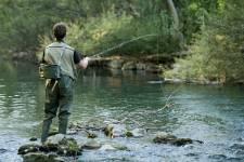 Tantôt farouche, tantôt sournoise, la truite bleue exige une qualité  d'eau fraîche, oxygénée et claire. D'où la présence de ce poisson unique  dans la rivière Sainte-Marguerite.