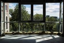 Vivre en hauteur, c'est bien. Avoir une vue magnifique sur les environs, c'est mieux ! Ce privilège est d'autant plus apprécié qu'il n'est pas offert à tous. Neuf complexes résidentiels en construction à Montréal et dans les environs ont des vues remarquables sur l'eau, la ville ou la nature. Quels sont-ils ? À vous de les découvrir !