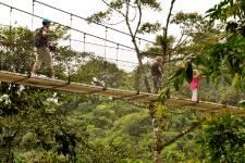Des singes en liberté, une flore riche, des volcans au repos, des plages pour s'initier au surf... Petit pays par sa taille, le Costa Rica a autant à offrir aux enfants qu'aux parents.