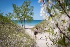 Des plages de sable blanc et de nombreux vignobles font de la région de Prince Edward County un incontournable pour profiter de l'été.
