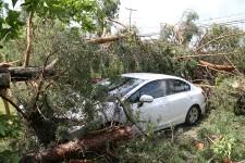 Le coeur du village de Roxton Falls a été touché par une microrafale, lundi matin. Plusieurs arbres ont été cassés ou déracinés et des toitures ont été arrachées.