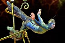 Les images de notre photographe Pascal Ratthé, présent à la première du spectacle OVO du Cirque du Soleil à l'amphithéâtre.
