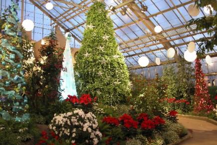 Quoi faire du 8 au 14 d cembre 2008 andr cloutier no l for Jardin botanique decembre 2015