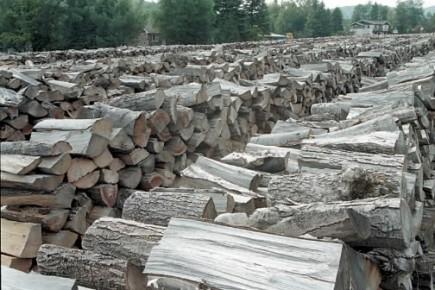 Le gouvernement Charest entend obliger l'industrie à vendre des poêles dotés... (Photo: La Presse)