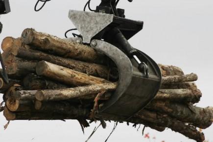 L'industrie forestière canadienne se dit prête pour une reprise et elle... (Photo: La Presse Canadienne)