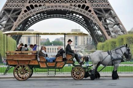 Tondeuse à gazon, débardeur, mini-bus scolaire ou benne à ordures, le cheval... (Photo: AFP)