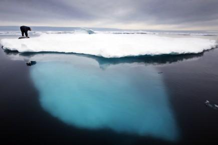 La calotte polaire arctique disparaîtra complètement en été «dans 20 à 30 ans»,... (Photo: AP)