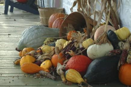 Une scène d'automne à La Courgerie de Sainte-Élisabeth... (Photo: fournie par La Courgerie)