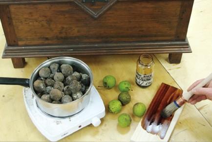 Le brou de noix ric th riault et pierre pag - Brou de noix bois ...