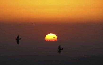 L'euthanasie et le suicide assisté ne sont pas... (PHOTO: JAAFAR ASHTIYE, ARCHIVES AFP)