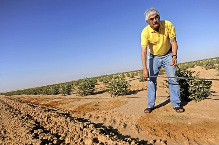 Naty Barak, directeur du développement durable de Netafim,... (Photo Ahikam Seri, collaboration spéciale)
