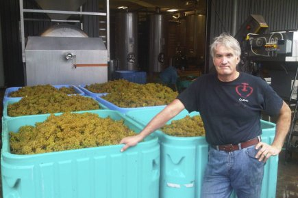 Le vigneron Thomas Bachelder à Niagara-on-the-Lake.... (Photo fournie par Thomas Bachelder)
