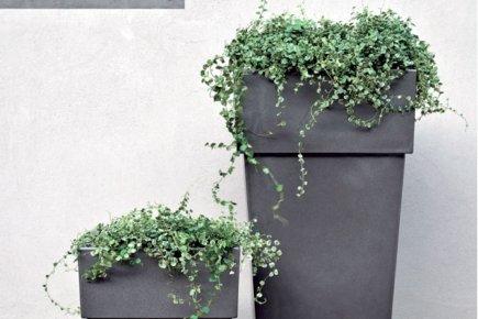 jardiner en hauteur sophie gall habitation. Black Bedroom Furniture Sets. Home Design Ideas