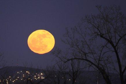 Une «super pleine Lune», qui apparaissait particulièrement grosse et brillante... (Photo Bernard Brault, La Presse)