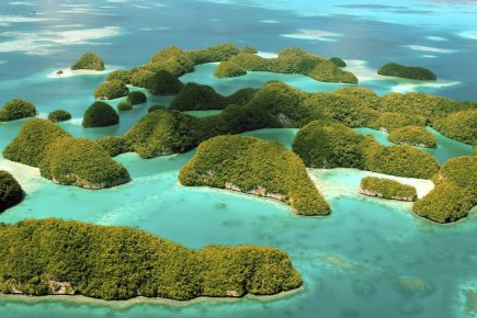 Les Rock Islands sont des îles formées de... (Photo fournie par Palau Visitors Authority)