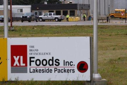 Le syndicat représentant les travailleurs de l'abattoir albertain XL Foods... (La Presse Canadienne)