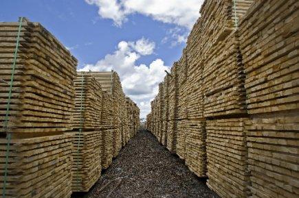 Après une remontée substantielle des prix en 2012, les produits forestiers de...