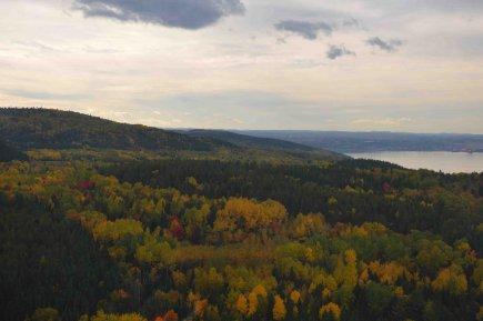 Résolu détient au Canada 13 millions d'hectares de... ((Archives))